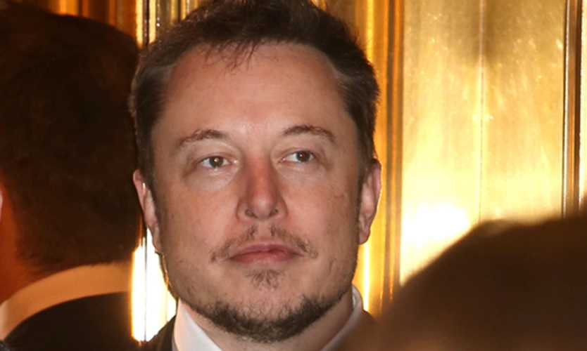 Elon Musk says he deleted his Tesla titles