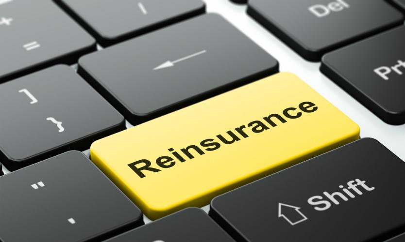 Alternative reinsurance market set to rebound after losses: Experts