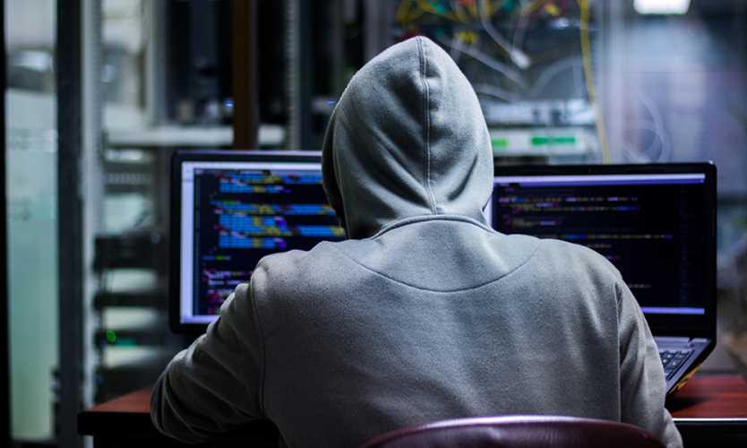Dutch cyber