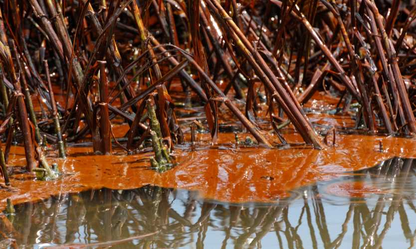 Deepwater Horizon ruling Lloyd's Anadarko