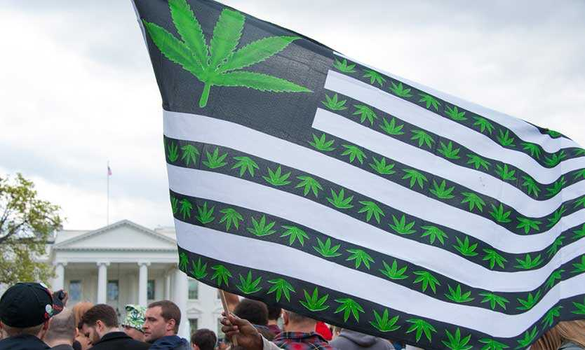 Pot protesters rally front of the White House