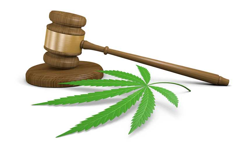 Justice Department doubles down on federal marijuana law