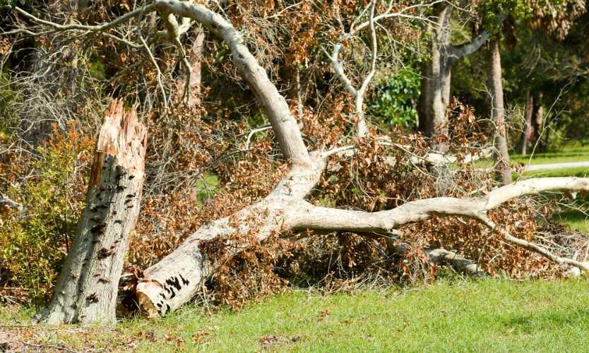 Hurricane Maria likely to cost Puerto Rico up to $95 billion: Moody's