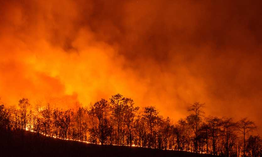 California wildfire insured losses could reach $3 billion: AIR
