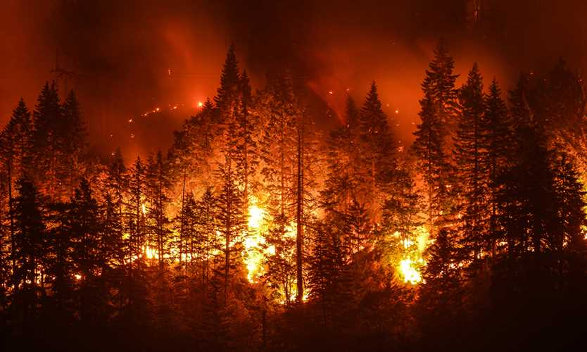 Rising California wildfire risks challenge power, utility underwriting