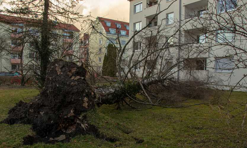 Storm Eberhard damage in Germany