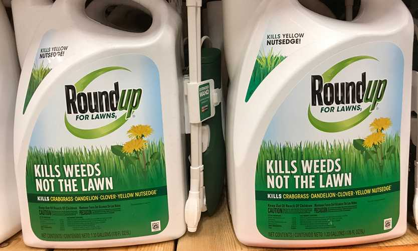 Bayer Roundup