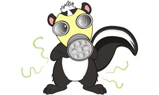 Something stinks dog sprayed by skunk insurance adjusters assessment lawsuit