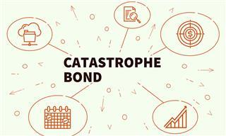 cat bonds