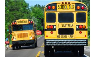 School bus drivers racial discrimination reinstated