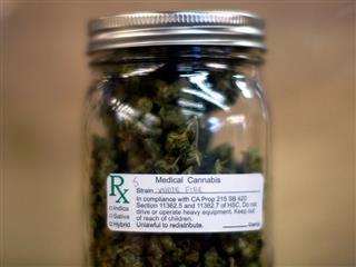 medical marijuana workers comp ADA discrimination