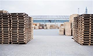 OSHA cites pallet maker for worker injury from machine