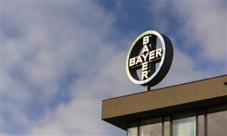 Bayer whistleblower lawsuit reinstated again