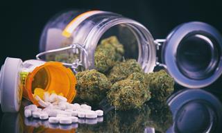 PTSD patients can purchase medical marijuana in Minnesota