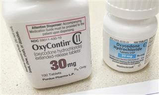 New York sues OxyContin maker Purdue Pharma over opioids