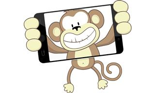 Monkey selfie case reaches settlement crested macaque Naruto David Slater