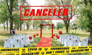 canceled wedding
