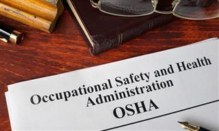 OSHA Ajin USA fined bride worker crushed death Hyundai Kia supplier