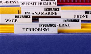 AIG raises terrorism insurance limit to cover attacks on property
