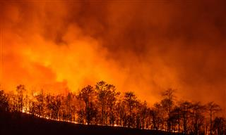 California wildfire insured losses could reach $3 billion: AIR