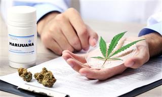 Marijuana California Proposition 64 alternative medical practitioners