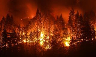 Catastrophe modelers respond to growing wildfire threat Karen Clark Aon Benfield Risk Management Services AIR Worldwide