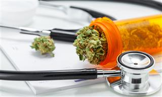 Medical marijuana an effective opioid alternative: Study