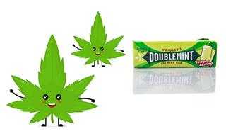 Wrigley scion moves from chewing gum to pot