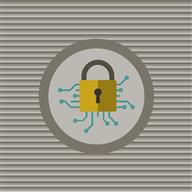 NAIC sets goals for cyber security for insurers and brokers