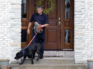 Business Insurance Off Beat news story: FBI training dogs to sniff for electronic devices