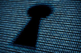 Risk managers key to managing cyber exposures, Federation of European Risk Management Associations tells European Commission