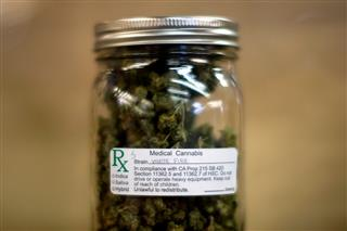 Medical marijuana a growing workers comp challenge
