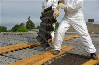 Comp benefits only remedy for asbestos worker's survivors