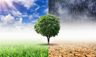 Insurance industry addressing climate change influence limited Geneva Association report