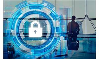 Small and medium enterprises forgoing cyber coverage Argo survey