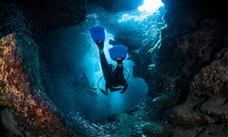 Travelers prevails in litigation over diver drowning Joseph Nicholas Grosso Pompano Beach Florida