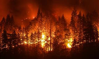 PG&E wildfires