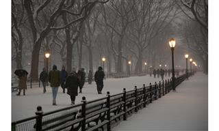 Winter weather costs US insurers 475 million dollars Aon Benfield Impact Forecasting