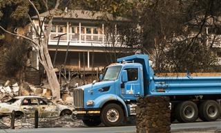 California PG&E bankruptcy could hit insurers from two directions Moodys report wildfires