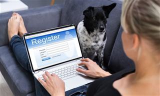 pet passwords