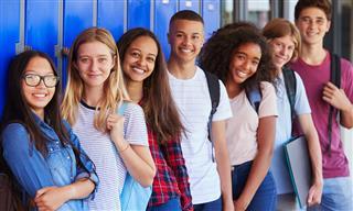 High school diversity