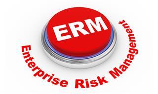 Enterprise risk management value growing Risk Insurance Management Society