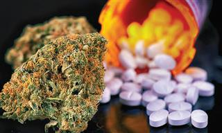Medical pot use raises concerns about addiction potential similar opioids