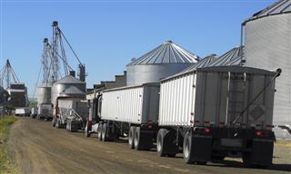 Insurer not liable for policyholder defense in trucker's allergy death