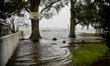 Hurricane Florence unlikely to trouble insurers Standard and Poors S&P