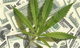 California gives Golden Bear Insurance Company approval to lower cannabis rates