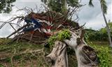 Broad losses scant insurance coverage for storm hit Puerto Rico firms