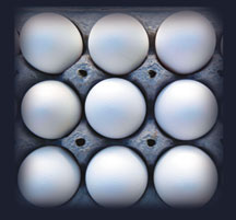 Safety, cover in focus after huge egg recall