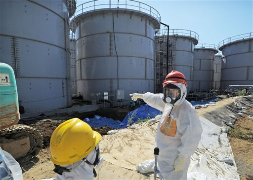 Japan official wants Fukushima operator Tepco to be liquidated