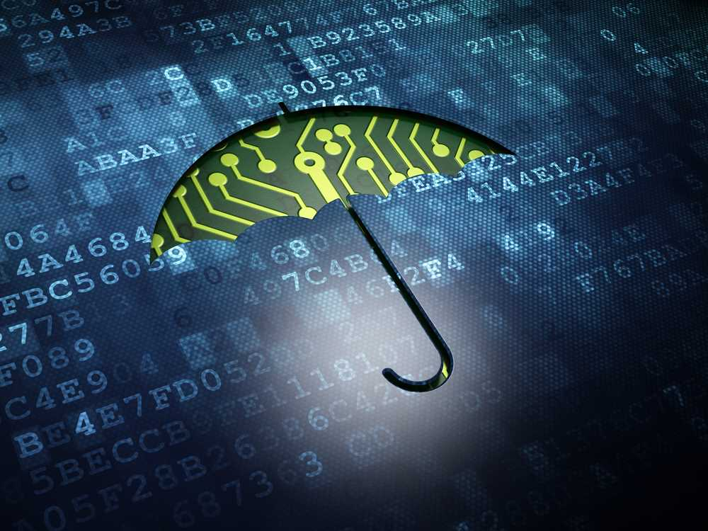 Insurer not liable for cyber policyholder's defense